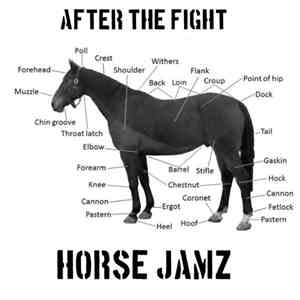 After The Fight - Horse Jamz album flac