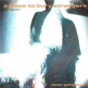 A Place To Bury Strangers - Never going down album flac